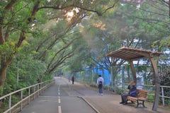 有太阳光的一条自行车路 免版税库存照片