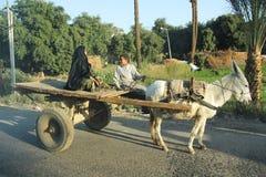 有太阳和驴的阿拉伯妇女 库存图片