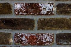 有太阳斑点的砖墙 库存照片