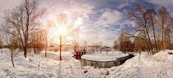 有太阳的冬天全景 免版税库存照片