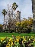 有奥克兰大学的尖沙咀钟楼,新西兰, N阿尔伯特公园 库存图片