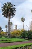 有奥克兰大学的尖沙咀钟楼,新西兰, N阿尔伯特公园 图库摄影