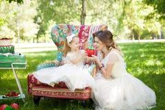 有女儿的乐趣母亲公园 免版税库存照片