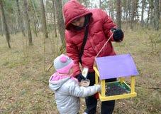 有女儿的年轻人在鸟饲养者投入了五谷 库存图片