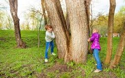 有女孩戏剧捉迷藏的男孩在森林里 免版税库存图片