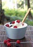 有奶油和莓果的碗 库存图片