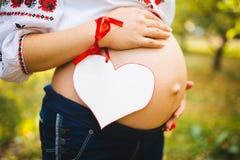 有她的丈夫容忍的一名孕妇腹部,穿戴在与空间的传统乌克兰成套装备和举行纸心脏为 免版税库存图片