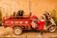 有她的山羊的一个小女孩 免版税库存图片
