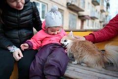 有她的母亲和一条蓬松狗的小和甜女孩 免版税库存照片
