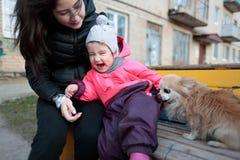有她的母亲和一条蓬松狗的小和甜女孩 免版税库存图片