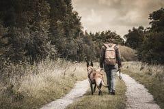 有她的比利时Malinois牧羊人的妇女 走在一条道路在森林里遛他的狗在公园 发现自然 绿色结构树 图库摄影