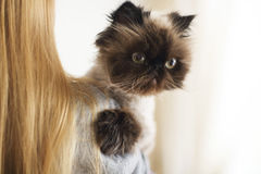 有她的波斯猫极端的白肤金发的妇女 免版税库存照片
