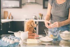 有她的狗的妇女在厨房烹调 免版税库存图片
