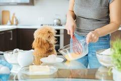 有她的狗的妇女在厨房烹调 图库摄影