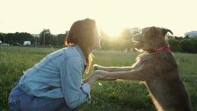 有她的狗的愉快的年轻白种人妇女在公园 股票视频