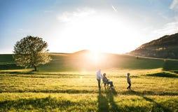 有她的资深祖父母的一个小女孩有在步行的轮椅的外面在日落自然 免版税库存照片