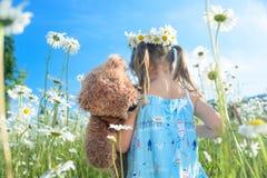 有她的走在雏菊的领域的玩具熊的女孩 库存图片