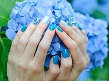 有好的修指甲的女性手在一朵蓝色花 库存照片