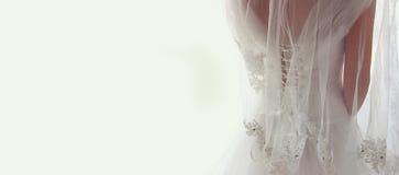 有婚礼礼服和面纱的美丽的新娘,从后面 免版税库存图片