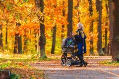 有婴儿推车的一个年轻母亲通过秋天公园走回到照相机 图库摄影