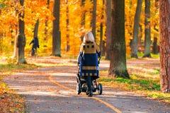 有婴儿推车的一个年轻母亲通过秋天公园走回到照相机 库存照片