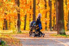 有婴儿推车的一个年轻母亲通过秋天公园走回到照相机 免版税图库摄影
