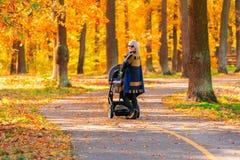 有婴儿推车的一个年轻母亲通过秋天公园走回到照相机 免版税库存图片