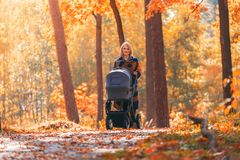有婴儿推车的一个年轻母亲通过秋天公园走 库存图片