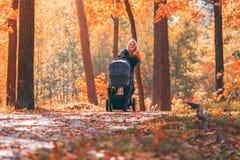 有婴儿推车的一个年轻母亲通过秋天公园走 图库摄影
