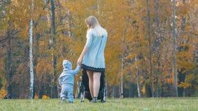 有婴儿车的年轻母亲,她的走在她举行的手附近的小小儿子 秋天公园 股票视频