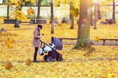 有婴孩摇篮车的年轻母亲在秋天公园 库存照片