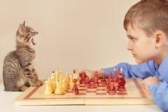 有嬉戏的小猫的小高段棋手下棋 免版税库存照片