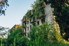 有子弹标记的在鬼城,战争在阿布哈兹,绿色之后启示概念的后果被破坏的长满的公寓 免版税库存图片