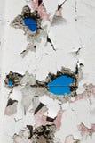 有孔的混凝土墙在几个地方 免版税库存照片