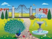 有孔雀和喷泉的美丽的公园 库存照片