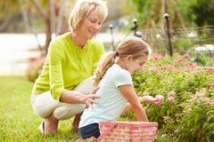 有孙女的祖母复活节彩蛋狩猎的在庭院里 免版税库存图片