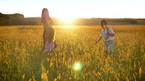 有孩子的亚裔母亲在领域走在夏天,战斗与花,家庭观念 股票录像