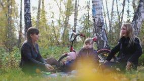 有孩子的年轻家庭一顿野餐的在一晴朗的秋天天投掷的叶子的公园 t 3840x2160 4K 股票录像