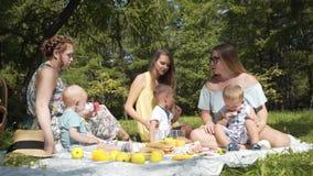有孩子的年轻母亲在公园坐野餐 股票录像