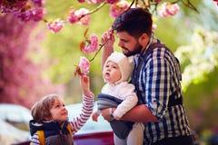 有孩子的愉快的父亲在步行在春天城市,小型航空母舰,父亲事假 免版税库存照片