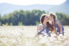 有孩子的母亲开花的雏菊的夏天领域的 免版税库存图片