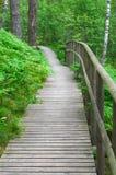 有安全栏杆的木木板走道在夏天森林里 免版税库存图片