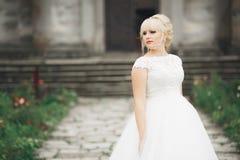 有完善的婚礼礼服的美丽的典雅的摆在老城堡附近的新娘和花束 库存照片