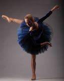 有完善的身体的美丽的芭蕾舞女演员在摆在演播室的蓝色芭蕾舞短裙成套装备 古典芭蕾艺术 库存图片