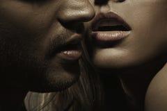 有完善的面毛和妇女的肉欲的嘴唇的年轻人 库存照片
