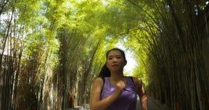 有实践马尾的赛跑的年轻可爱和活跃亚裔中国妇女跑步锻炼在美丽的城市公园  免版税库存照片