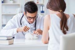 有宠物兔子参观的狩医医生的妇女 免版税库存图片