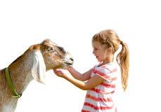 有宠物山羊的女孩 免版税库存照片