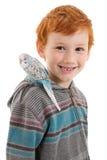 有宠物鸟鹦哥的男孩在肩膀 库存图片