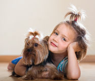 有室内约克夏狗的逗人喜爱的小女孩 图库摄影